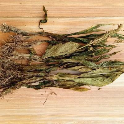 见血青多少钱一斤 安国植物中药材见血青功效