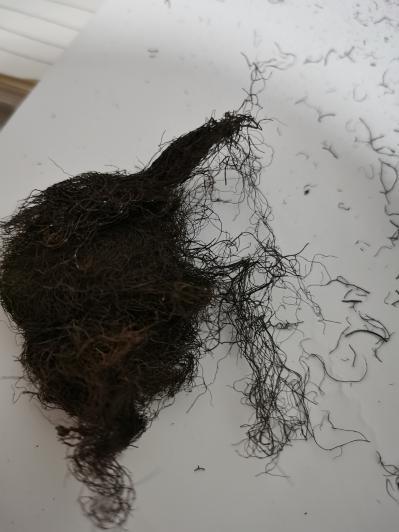 头发七批发零售多少钱一斤到那里买头发七