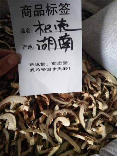 出售枳壳枳壳产地价格批发零售