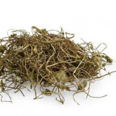 连线草别名是什么 哪里能买到连线草价格多少