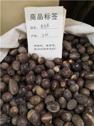 供应圆香果圆香果产地价格批发零售到那里买圆香果