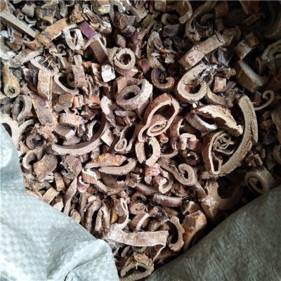 供应桑白皮批发也零售到那里买桑白皮多少钱能买到桑白皮