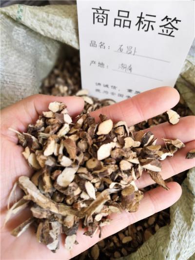 供应石菖蒲石菖蒲批发零售到哪多少钱一斤里买石菖蒲