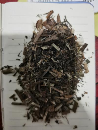 偏门药材毛茛哪里卖 毛茛一公斤多少钱 毛茛的功效是什么