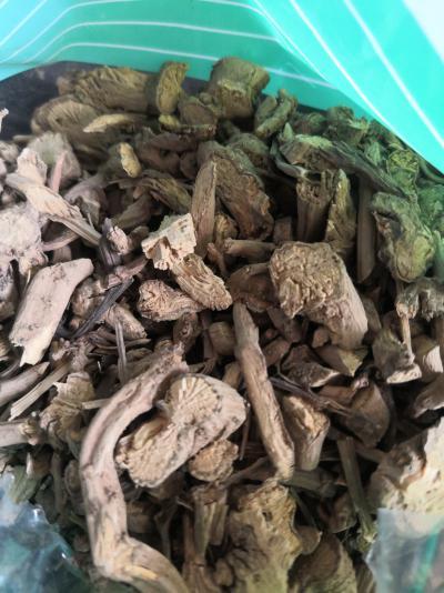 供应青木香青木香哪里能买到多少钱一斤