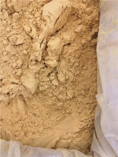 供应蒲黄蒲黄批发零售到那里买蒲黄多少钱一斤