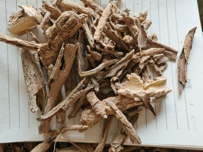 哪里卖地骨皮价格如何 中药材地骨皮一公斤多少钱 地骨皮批发