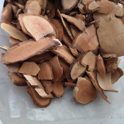 猕猴桃根有什么药效 安国中药材批发猕猴桃根价格如何