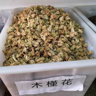 木槿花功效作用 木槿花去哪里能买到 木槿花一公斤多少钱