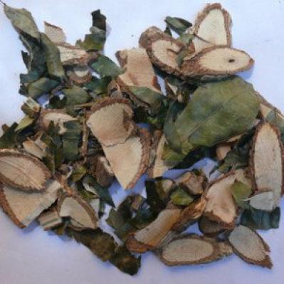 七叶莲别名 七叶莲功效与作用 七叶莲和鸭脚木皮的区别
