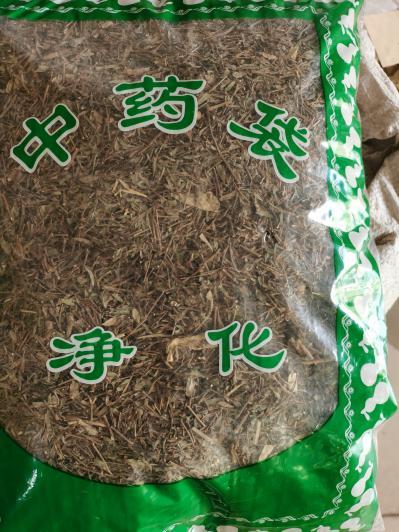 供应蚊子草批发零售蚊子草哪里能买到蚊子草多少钱一斤